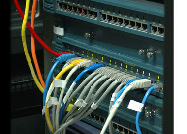 Some of our many Cisco Gig-E 2960 high-speed switches in use at our Montreal colocation facility.